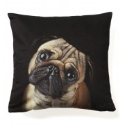 KOZIEL PUG DOG CUSHION