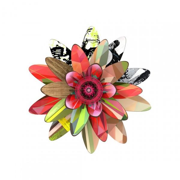 MIHO FLOWER NORTHERN STAR