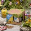 SEEDBOM SET BIRD, BEES & BUTTERFLIES