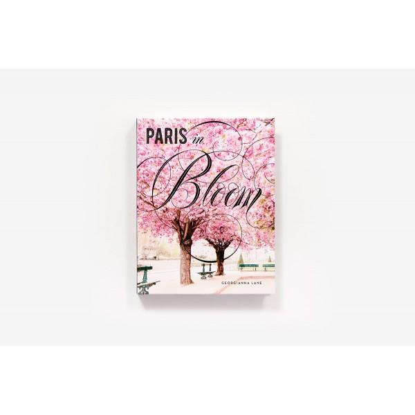 ABRAMS PARIS IN BLOOM