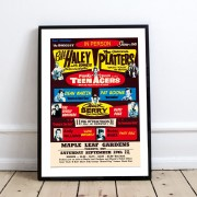 BLUE SHAKER POSTER STILE VINTAGE BILL HALEY & THE PLATTERS
