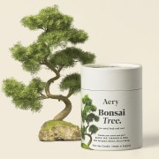 AERY LIVING FIG LEAF SCENTED CANDLE