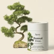 AERY LIVING CANDELA IN CERA DI SOIA BONSAI TREE